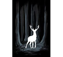 Glowing White Stag Photographic Print