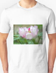 Frilly Pinks Unisex T-Shirt