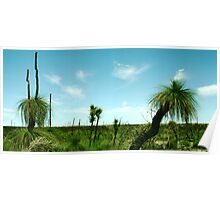 Xanthorrhoea (wide) Poster