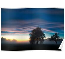 Weeping Willow in the Mist Poster