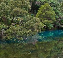 The Blue Lake - Jenolan Caves, NSW by Lianne Wooster