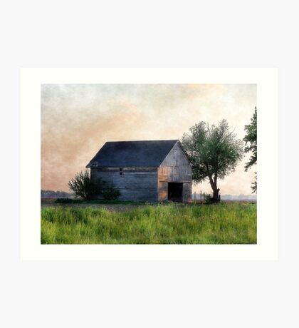 Country Abode Art Print