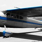 Blue Cessna by Bill Gamblin