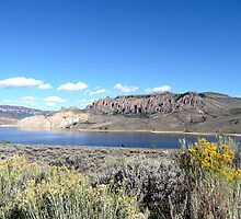 Blue Mesa Reservoir, Colorado by Margaret  Hyde