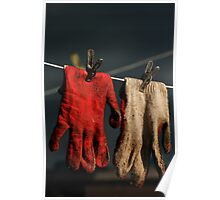 Gloves after job in backyard Poster
