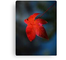 """Autumn Signature"" Canvas Print"