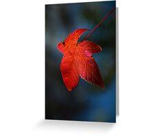 """""""Autumn Signature"""" Greeting Card"""
