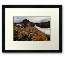 Classic Twisted Landscape Framed Print