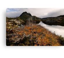 Classic Twisted Landscape Canvas Print