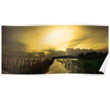 Vespere Mangrove - HDR panorama mangrove beach Poster