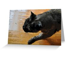 puss on a mission Greeting Card