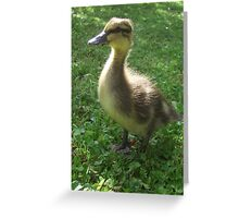 ~` Duckie `~ Greeting Card