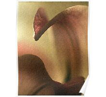 Abstract Of Lily Poster