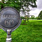 Section 60 by hogie247