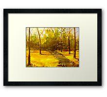 """Virginia Creeper Trail"" Framed Print"
