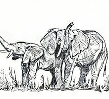 African Elephants sketch by Maree  Clarkson