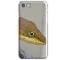 Male Green Anole iPhone Case/Skin