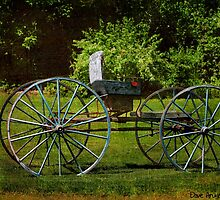 Buggy at the Burnside Plantation..... by DaveHrusecky