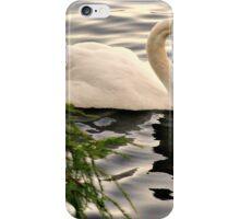 Graceful iPhone Case/Skin