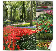 A Dutch Spring Collage Poster