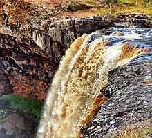 On The Edge ~ Wannon Falls by Clive