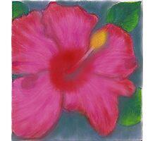 Karen's Oil Hibiscus Photographic Print