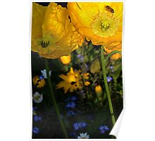 Bee on Poppy Poster