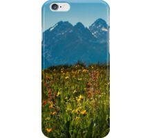 Wild Flowers and Teton Mountains II iPhone Case/Skin