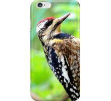 Caribbean Woodpecker iPhone Case/Skin
