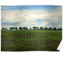 Landscape  Hunzedal Poster