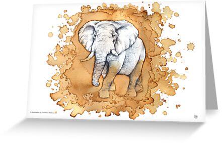 Elephant by CarolinaMatthes