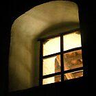 """""""SPANISH MISSION WINDOW""""  by waddleudo"""