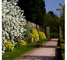 newstead abbey gardens nottingham england. Photographic Print