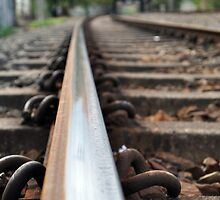 On track.. by Karen01