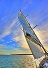 sails by terezadelpilar~ art & architecture
