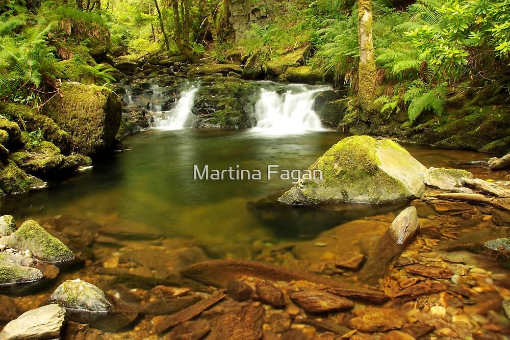 Double Falls at Torc  by Martina Fagan