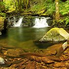 Double Falls at Torc  by Martina Fagan