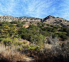 """""""Morning At Castle Peak Park"""" by Glenn McCarthy"""