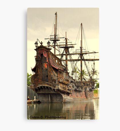 pirates. Canvas Print