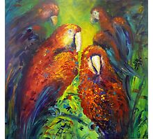 Gossiping parrots Photographic Print