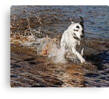 Z Splash  Canvas Print