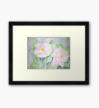 Happy Knockout Roses Framed Print