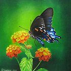 Butterfly #3 by lanadi