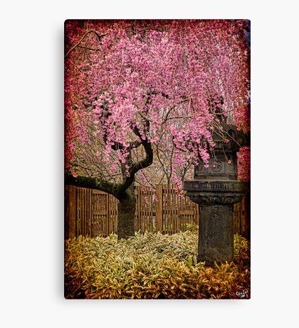 Asian Spring Canvas Print