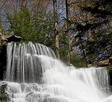 F. L. Ricketts Falls (top) by Tim Devine