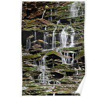 Sun, Water, Moss, Rock Poster