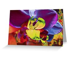 Orchid Art Collection Greeting Card