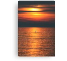 Bird in the Sunset Canvas Print
