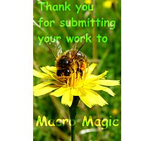 Thank you for submitting your work to Macro Magic! Photographic Print
