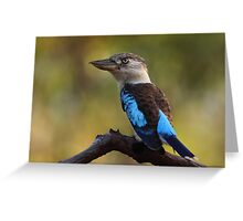 Nature's Alarm Clock / Blue-winged Kookaburra Greeting Card